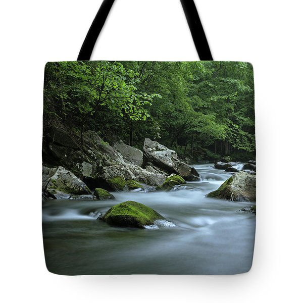 Tote Bag featuring the photograph Tremont by John Gilbert