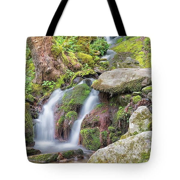 Tremont Road Waterfall Tote Bag