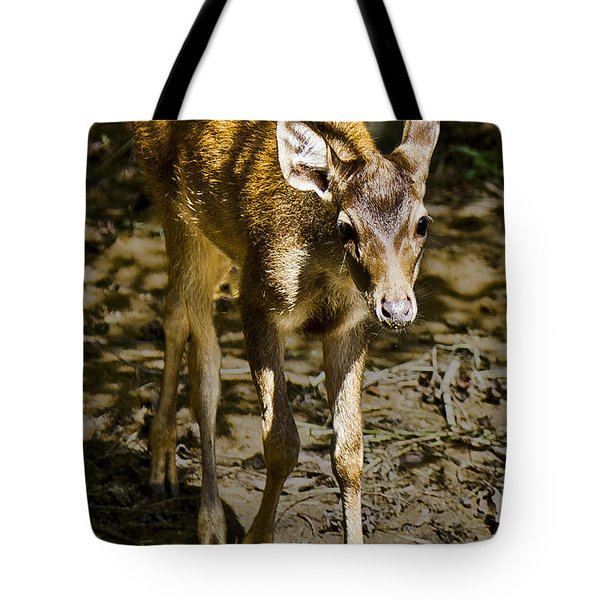 Trepidation Tote Bag