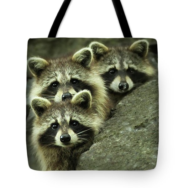 Tres Banditos Tote Bag by Mircea Costina Photography