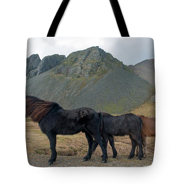Tote Bag featuring the photograph Tri - Color Icelandic Horses by Dubi Roman