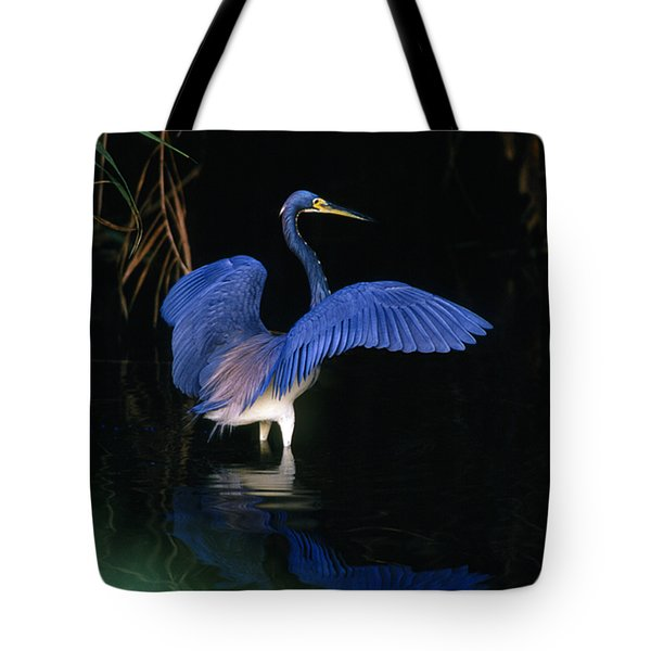 Tri-colored Heron - Fs000031 Tote Bag