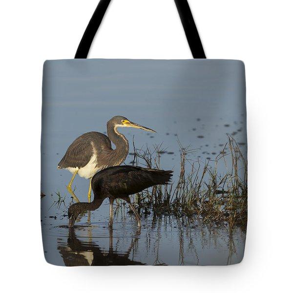 Tri-colored Heron And Glossy Ibis Tote Bag