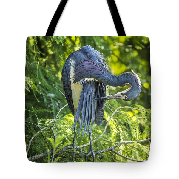 Tote Bag featuring the photograph Tri-colored Heron Grooming by Paula Porterfield-Izzo