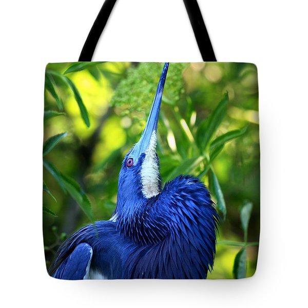 Tri-colored Heron Head Throw Tote Bag