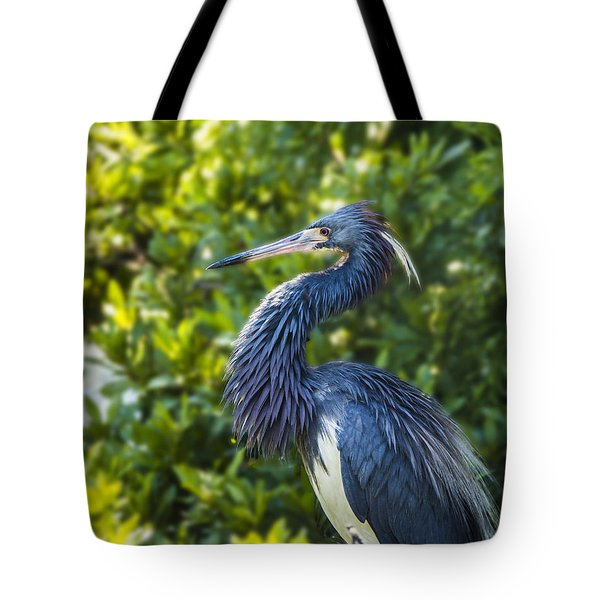 Tote Bag featuring the photograph Tri-colored Heron Plumage by Paula Porterfield-Izzo