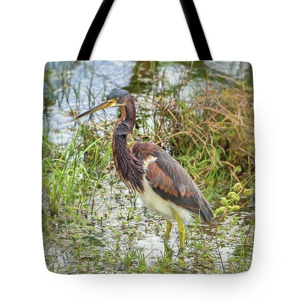 Tri-colored Heron Tote Bag
