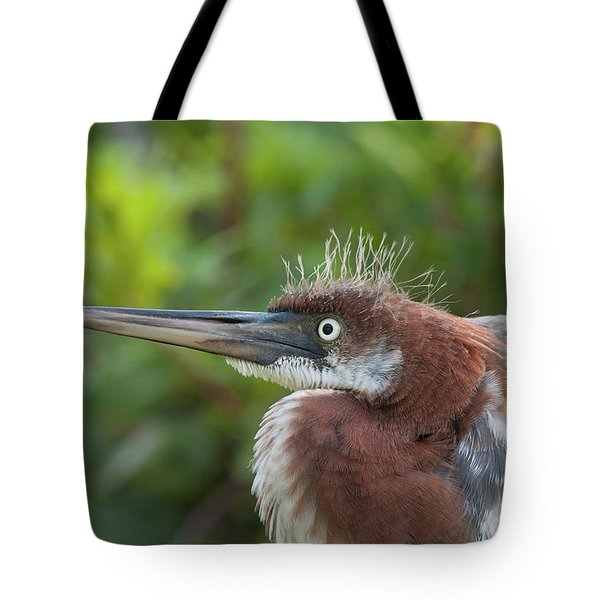 Tricolored Heron - Bad Hair Day Tote Bag