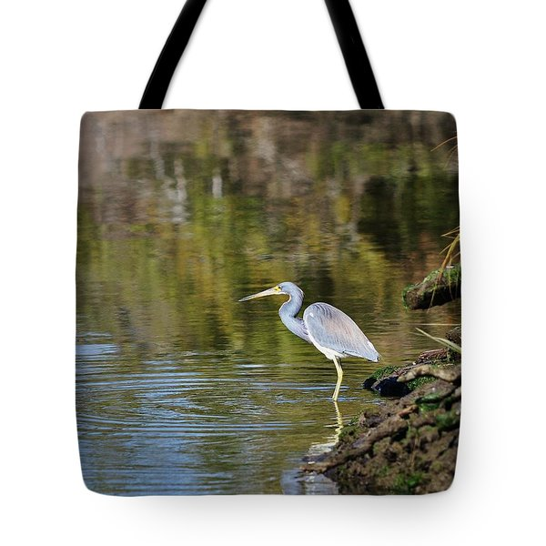 Tricolored Heron Fishing Tote Bag by Al Powell Photography USA