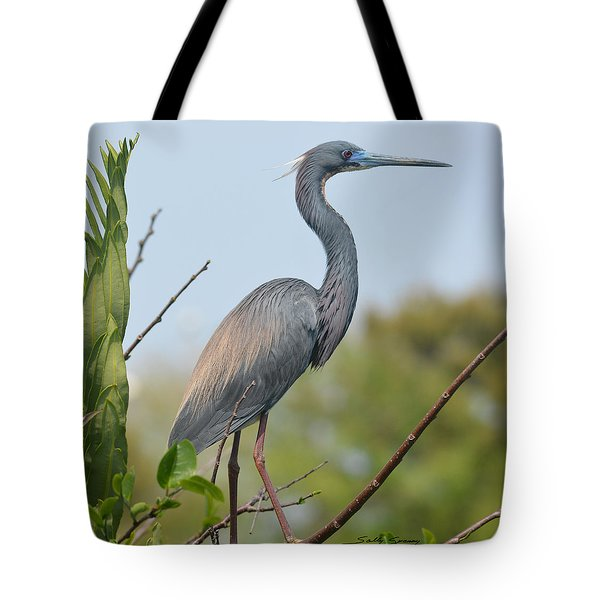 Tote Bag featuring the pyrography Tricolored Heron by Sally Sperry