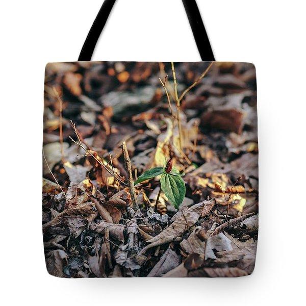 Trillium Blooming In Leaves On Forrest Floor Tote Bag