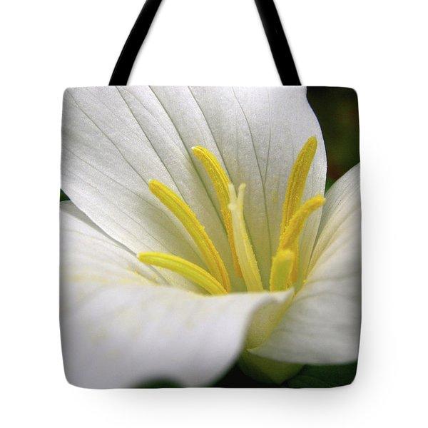 Trillium Grandiflorum Tote Bag