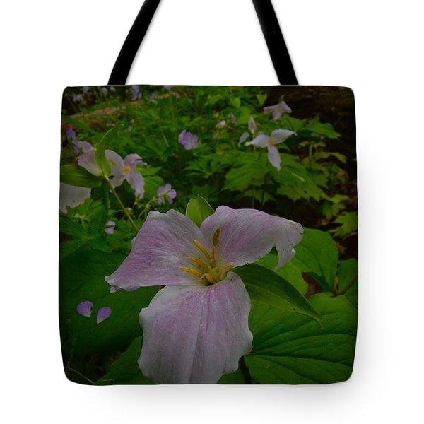 Trillium Tote Bag by Tim Good