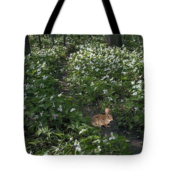 Trillium Woods No. 3 Tote Bag