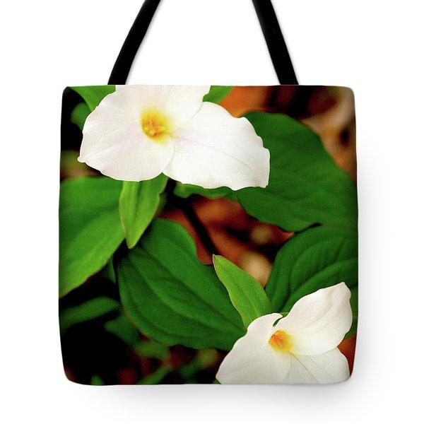 Trilliums Tote Bag