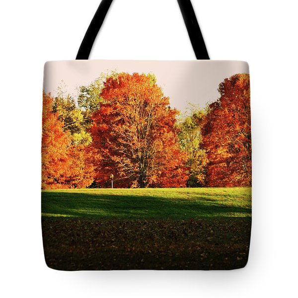 Trinity Trees Tote Bag by Hye Ja Billie