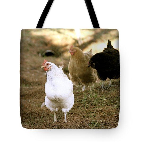 Trio Of Chickens Tote Bag