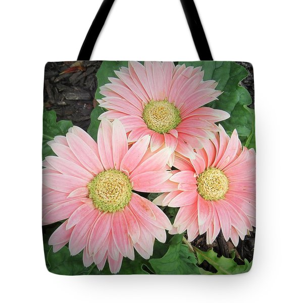 Tote Bag featuring the photograph Trio Of Gerbers by Jeanette Oberholtzer