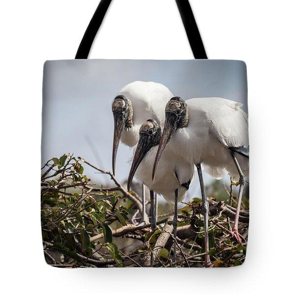 Trio Of Wood Storks Tote Bag