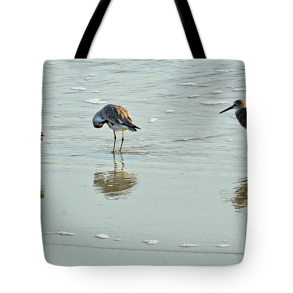 Trio Of Willets On Jekyll Tote Bag by Bruce Gourley