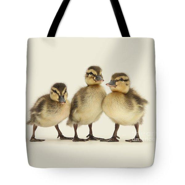 Triple Ducklings Tote Bag