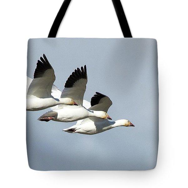Triple Play Tote Bag