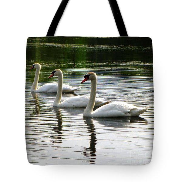 Triplet Swans Tote Bag