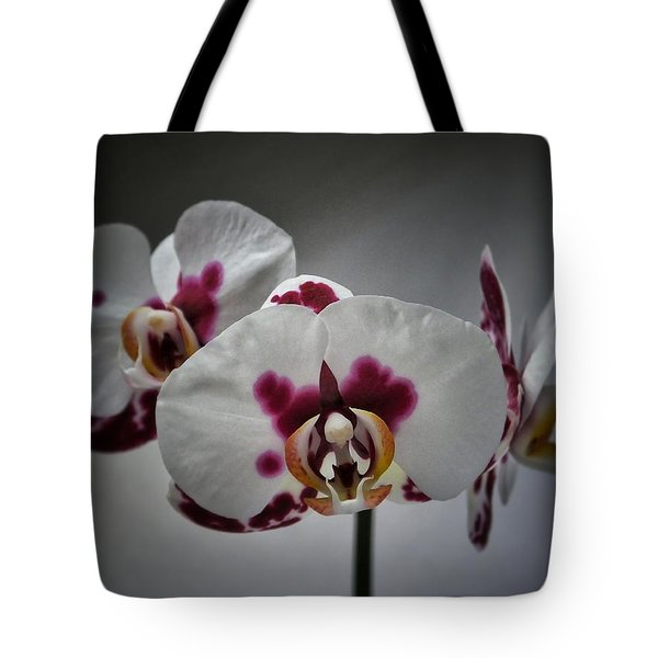 Tote Bag featuring the photograph Triplets by Karen Stahlros