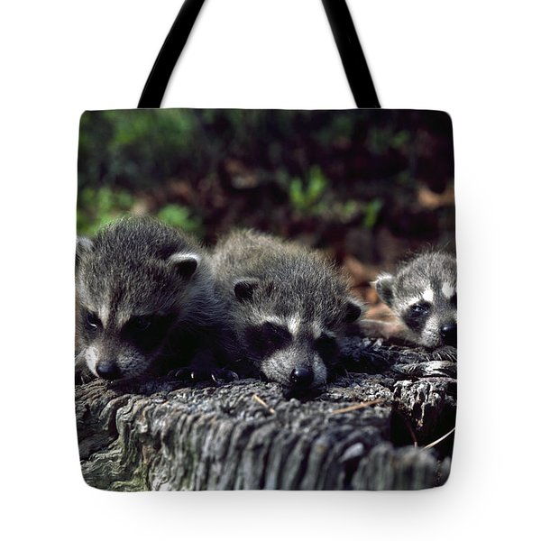 Triplets Tote Bag by Sally Weigand