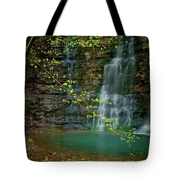 Tripple Falls Tote Bag by Iris Greenwell