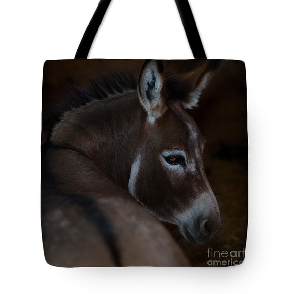 Tote Bag featuring the photograph Trixie by Irina ArchAngelSkaya