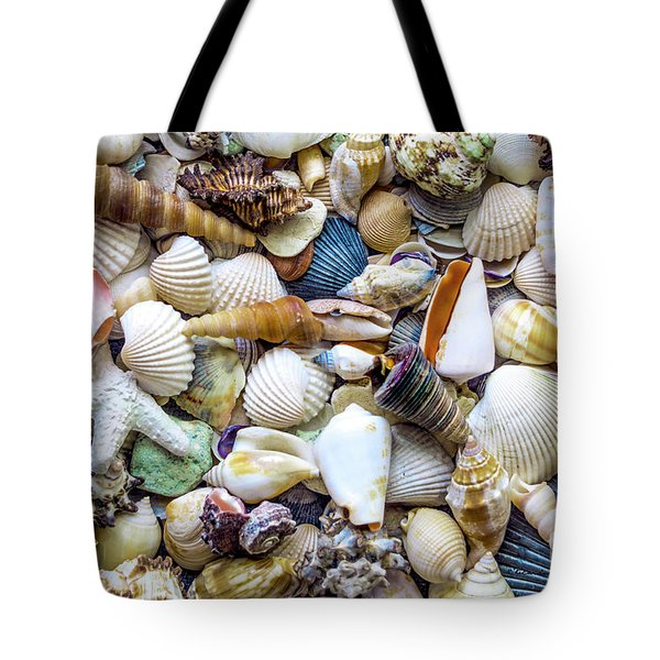Tropical Beach Seashell Treasures 1529b Tote Bag