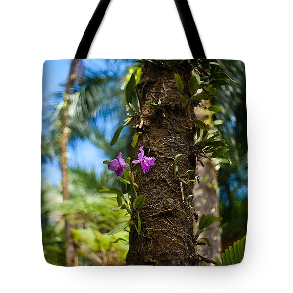 Tropical Beauty Tote Bag by Mike Reid
