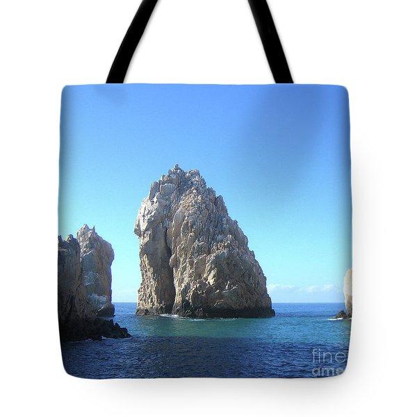 Tropical Blues Tote Bag