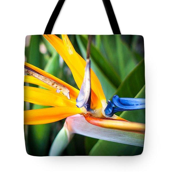 Tropical Closeup Tote Bag