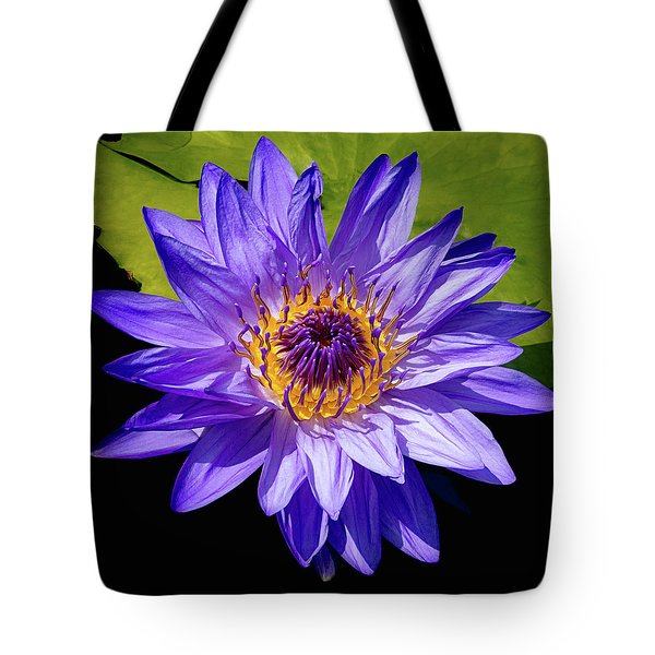 Tote Bag featuring the photograph Tropical Day Blooming Water Lily In Lavender by Julie Palencia