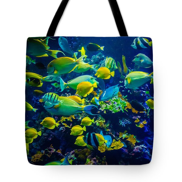 Tropical Fishes Of Maui Tote Bag by Janis Knight