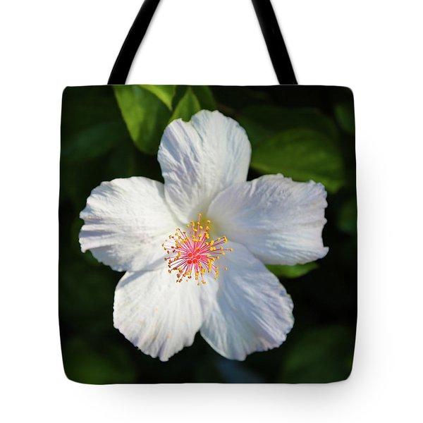 Tote Bag featuring the photograph Tropical Flower 2 by T A Davies
