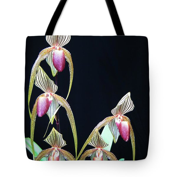 Tropical Lady Slipper 2 Tote Bag by Shirley Sirois