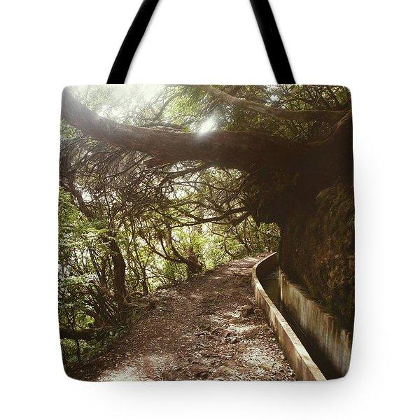 Levada Walk Tote Bag by Eva Dobrikova