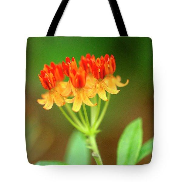Tropical Milkweed Tote Bag