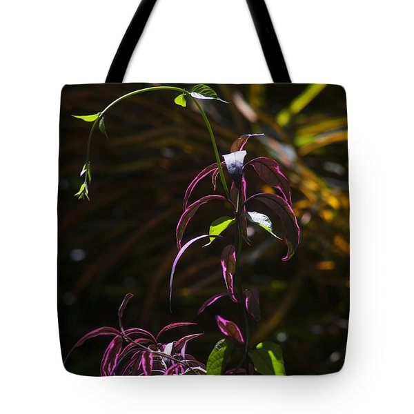 Tropical Mix Tote Bag