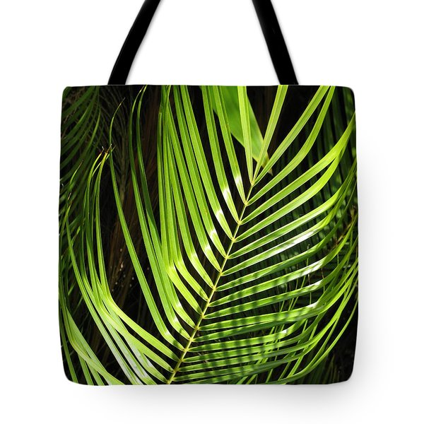 Tote Bag featuring the photograph Tropical Palm by Carol Sweetwood