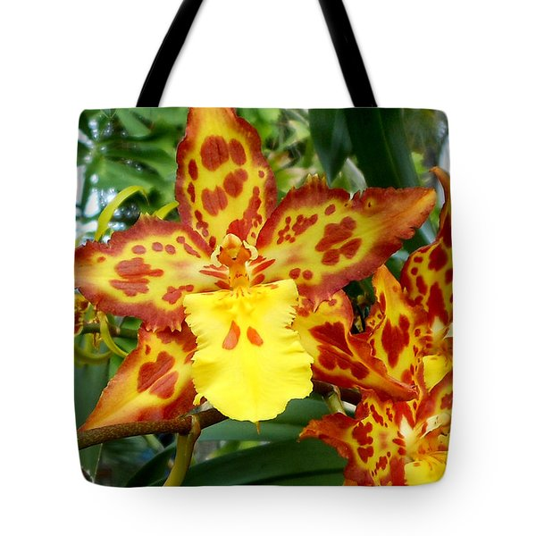 Tropical Red And Yellow Orchids Tote Bag