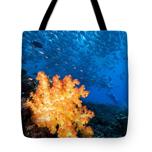 Tropical Reef Scene Tote Bag by Dave Fleetham - Printscapes