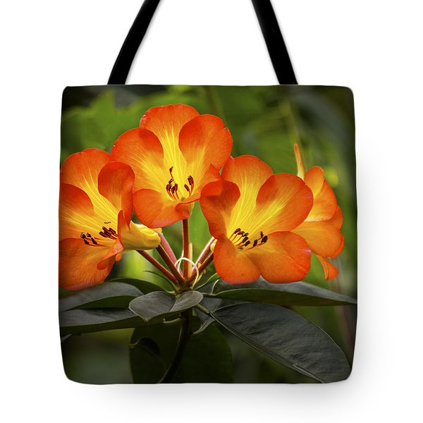 Tropical Rhododendron Tote Bag