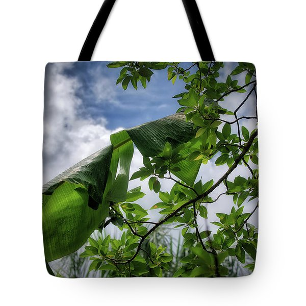 Tropical Sky Tote Bag