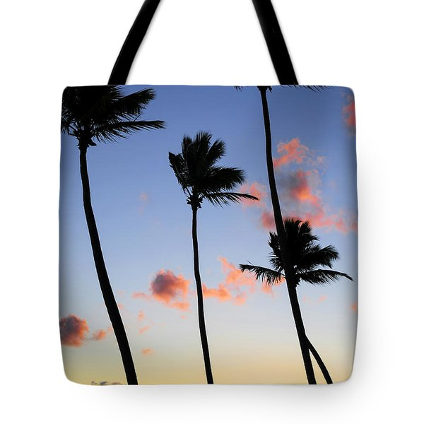 Tropical Sunrise Tote Bag by Elena Elisseeva