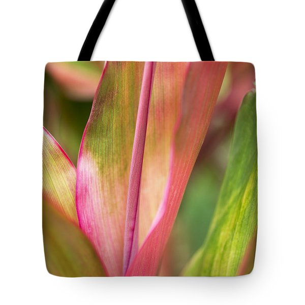 Tote Bag featuring the photograph Tropical Ti-leaves by Charmian Vistaunet