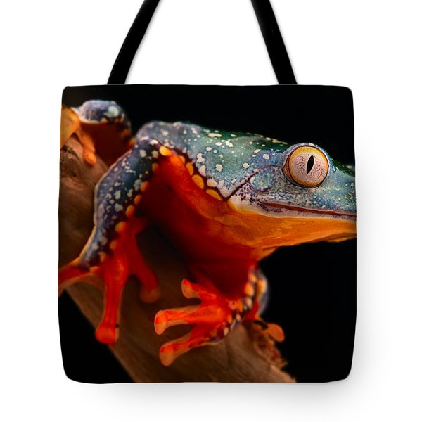 tropical tree frog Cruziohyla craspedotus Tote Bag